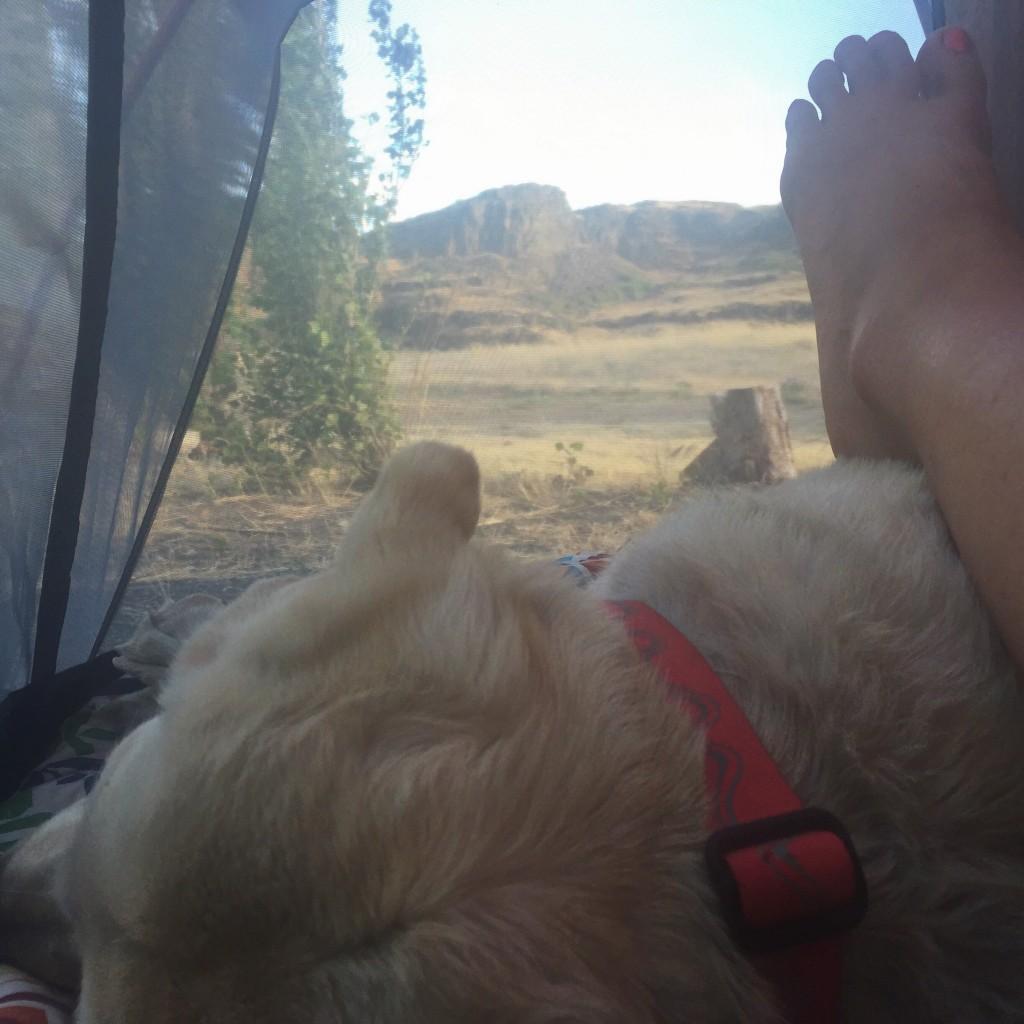 Mallory Paige - Camping