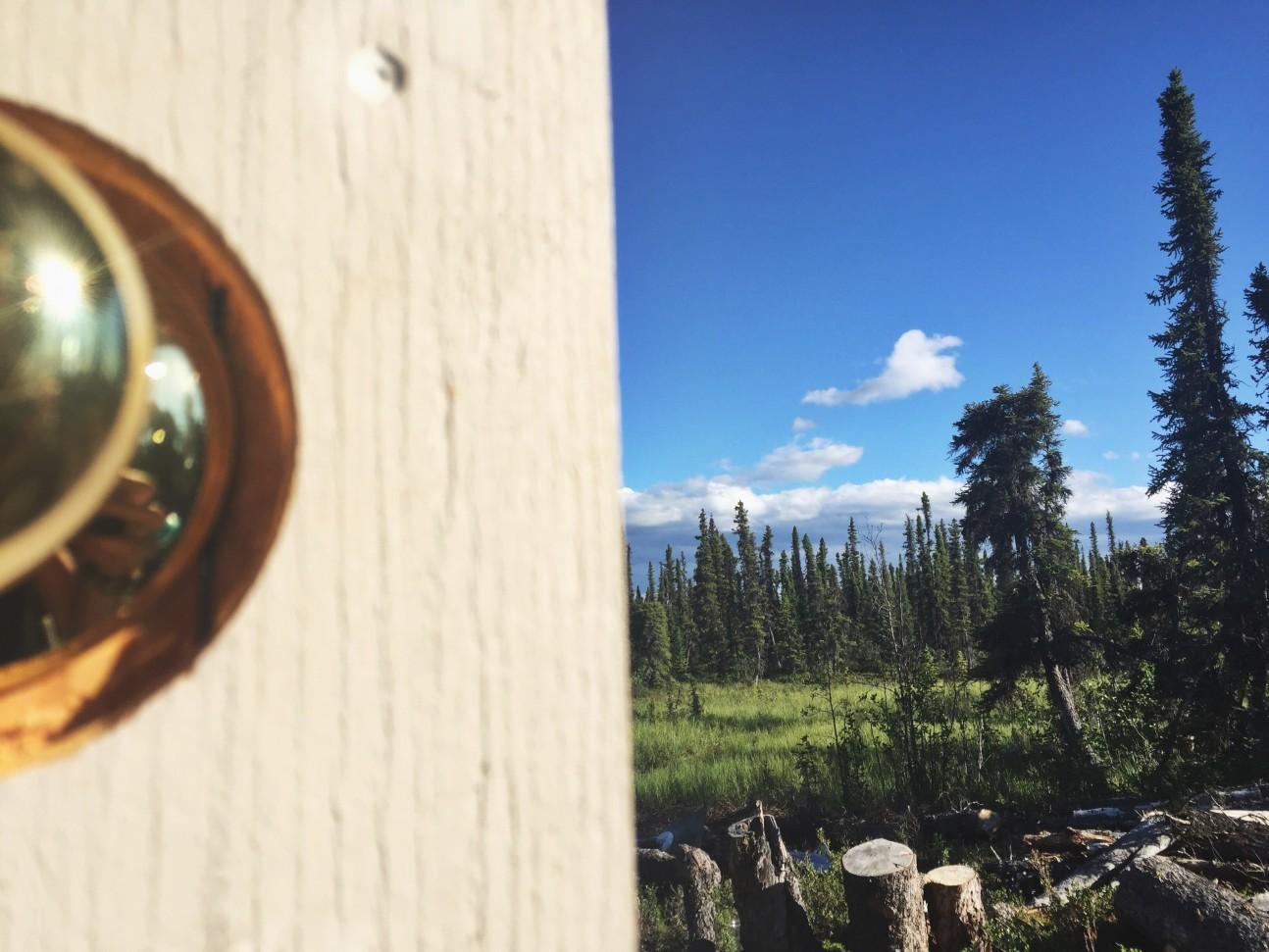 Operationg Moto Dog - Slana, Alaska