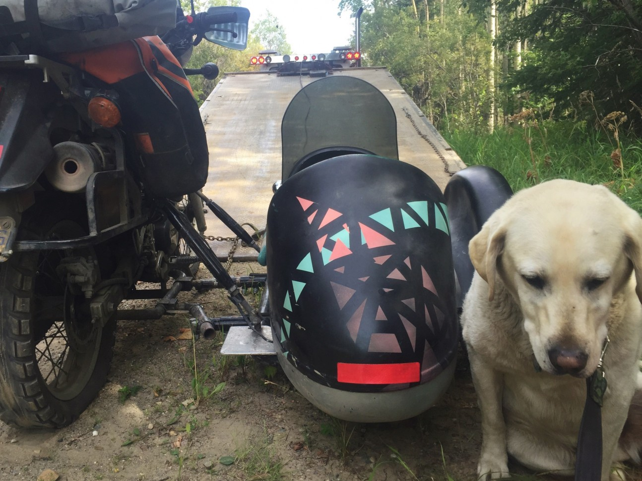 Towing Rufio - Operation Moto Dog
