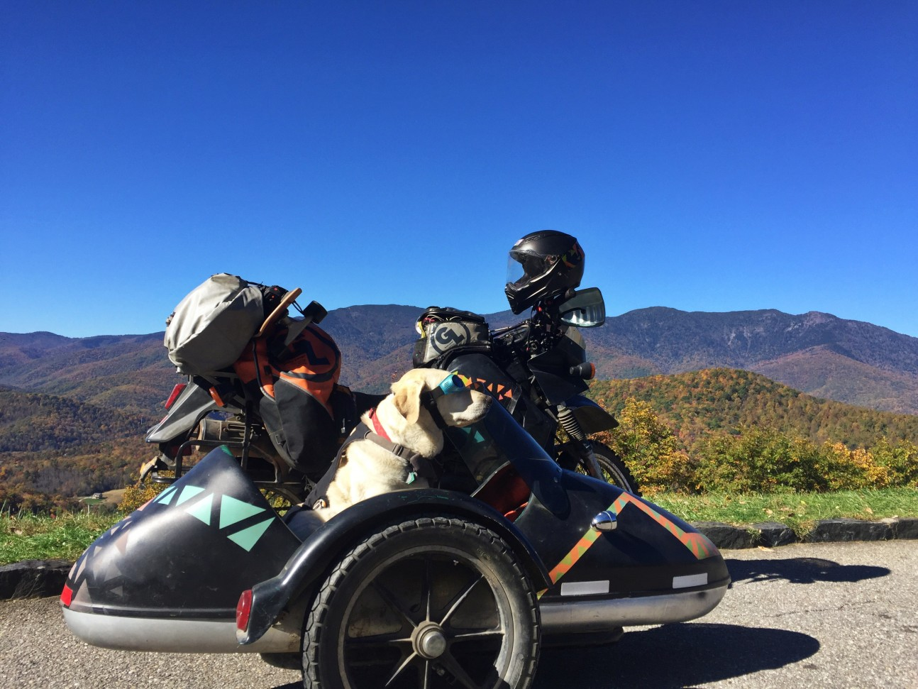 Baylor the Motorcycle Dog Explores North Carolina | Operation Moto Dog