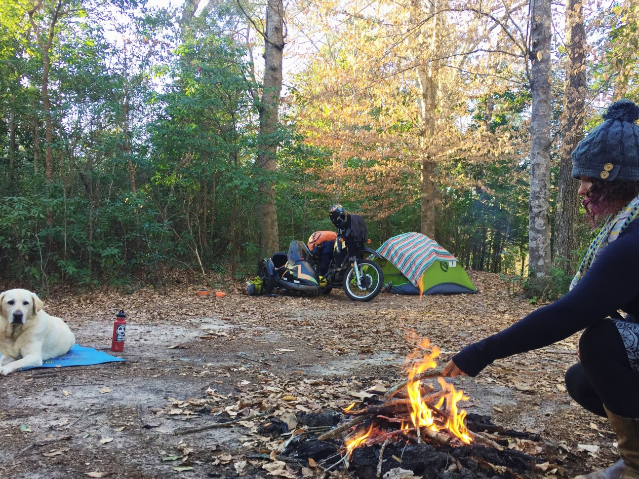 Motorcycle Camping with Mallory Paige | Operation Moto Dog Day 240