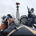 Sidecar Dog Baylor in Paris Texas