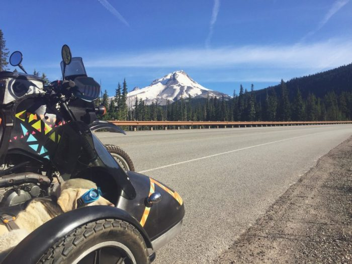 Baylor the Motorcycle Dog | Mt Hood Oregon