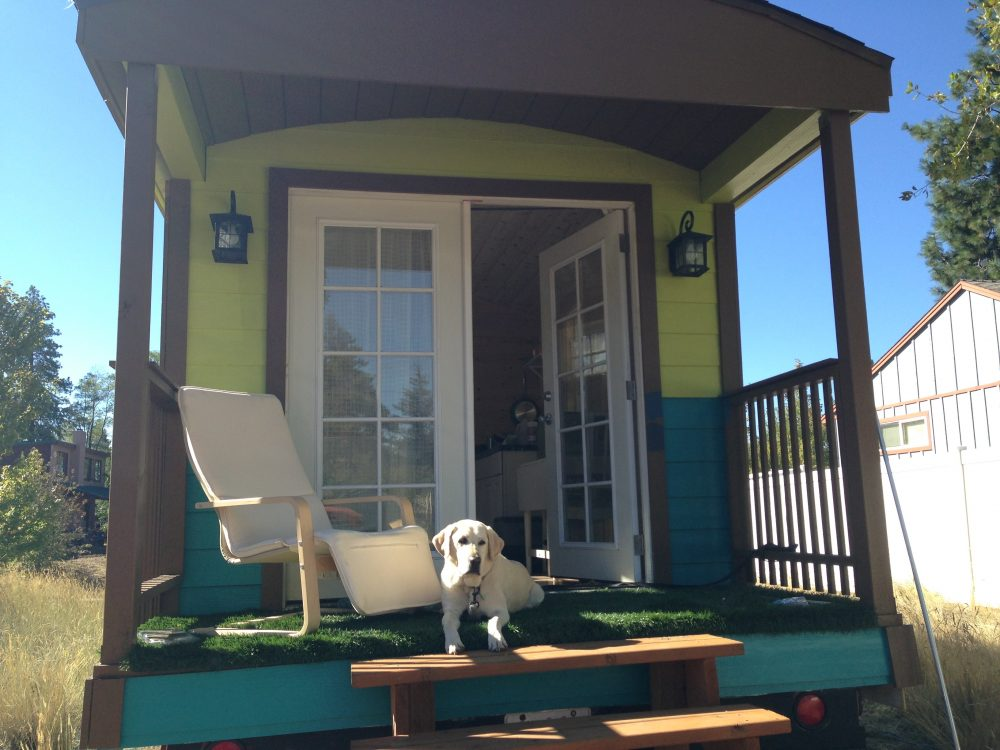 Baylor the Dog Lives in a Tiny Home