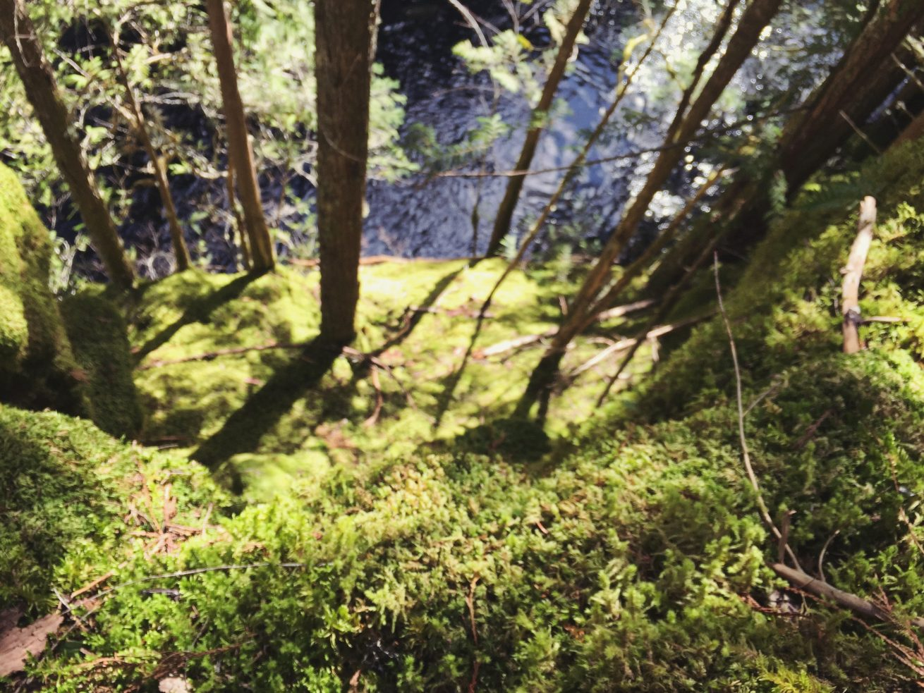 Mallory Paige explores Oregon